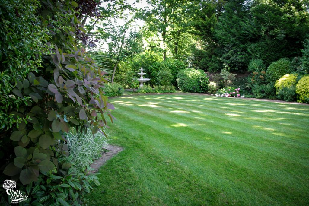 Eden Gardens Commercial Garden Maintenance London